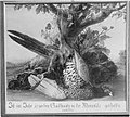 Johann Amandus Wink (Winck) - Toter Fasan - 2983 - Bavarian State Painting Collections.jpg