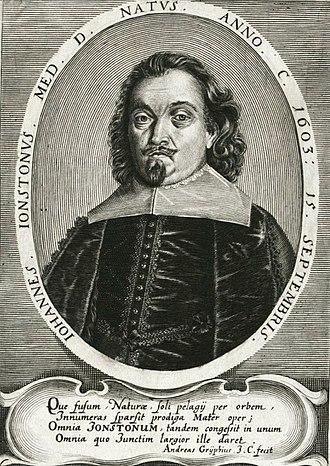 John Jonston - Jonston, ca. 1650
