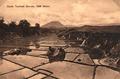 KITLV - 404520 - Kleingrothe, C.J. - Medan - Paddy field near Rakut Besi in the Batak - circa 1905.tif