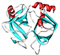 Kallikrein-1 1SPJ.png