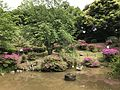 Kamenoike Pond of Kashii Shrine 2.jpg