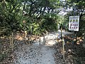 Kasuya Research Forest of Kyushu University 26.jpg