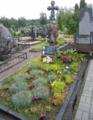 Kazio Buroko kapas Kupiškio miesto kapinėse.png