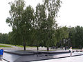 Khatyn in Belarus - 3 birch-trees of 4.jpg