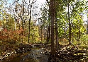 Kisco River - The Kisco River along the Early Settler's Trail
