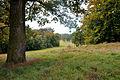 Klein-Glienicke Großer Wiesengrund.jpg