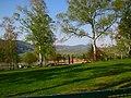 Klingenmünster - panoramio.jpg