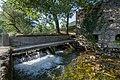Kolpa River 1317.jpg