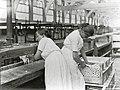 Koninklijke Stearine Kaarsenfabriek, Gouda (2946873832).jpg