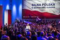 Konwencja na Śląsku - zakończenie kampanii (14066373800).jpg