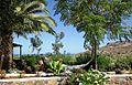Kreta Oost 2012 034 gardens.jpg