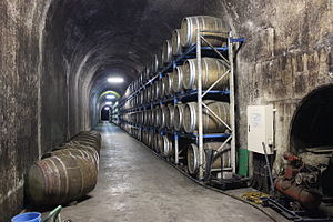 Nippō Main Line - Kuzuhara tunnel now being used as a sake storage area