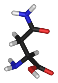 L-asparagine-3D-sticks.png