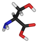 3D structure of L-serine