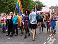 LGBTQ Pride Festival 2013 On The Streets Of Dublin - Were You One Of The 30,000 Who Took Part (9171283016).jpg