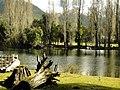 Lago Steffen, Argentina - panoramio.jpg