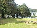 Laguna de Ipala o Candelaria. - panoramio (1).jpg