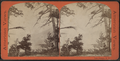 Lake George, N.Y, from Robert N. Dennis collection of stereoscopic views 2.png