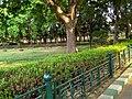 Lalbagh (Lal Baugh) Botanical Garden in Bangalore (now Bengaluru) 4.jpg