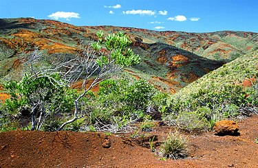 Landscape in the south of New Caledonia Landscape, south of New Caledonia.jpg