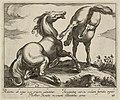 Landschap met twee paarden op een heuvel, één van hen ligt, naar rechts gewend. Het andere paard bokt en is op de rug gezien. NL-HlmNHA 1477 53011516.JPG