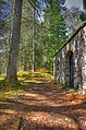 Last Resting Place Of The McNab Chieftains - panoramio.jpg