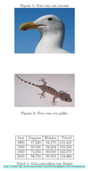 Latex voorbeeld figuren captions.png