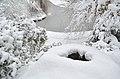 Lebenswertes chemnitz winter stadtpark schnee kleiner teich loch.jpg