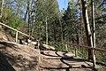 Leitenwälder der Isar 0666.jpg