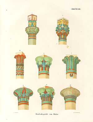 Ancient Egyptian architecture - Drawings of the types of the architectural capitals specific for the Ancient Egyptian civilization.