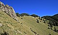 Lincoln National Forest 6.jpg