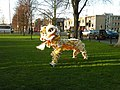 Lion Dance, Donkey's Common - geograph.org.uk - 1070885.jpg