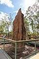 Litchfield National Park (AU), Magnetic Termite Mounds -- 2019 -- 3729.jpg