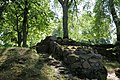 Livonijas ordeņa pilsdrupas - panoramio.jpg