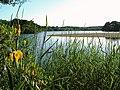Lochnaw Loch - geograph.org.uk - 1725824.jpg