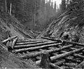 Log railroad trestle under construction, Wynooche Timber Company, near Montesano, ca 1921 (KINSEY 1618).jpeg