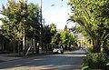 Lolol calle Acacias (28174146348).jpg