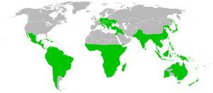 Loranthaceae - Image: Loranthaceae distribution