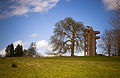 Lough Key Forest Park tower.jpg