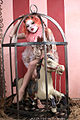Lucent Dossier circus aerial cage dancer elf circus horse Maggie.jpg