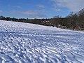 Lupton's Field, Asket Hill - geograph.org.uk - 1162280.jpg