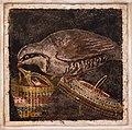 MANNapoli 9980 Mosaic pernice ladra Pompeii Italy.jpg