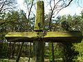 MOs810 WG 15 2016 (Pyzdry Forest II) (Lazinsk Drugi, old evangel. cemetery) (13).JPG