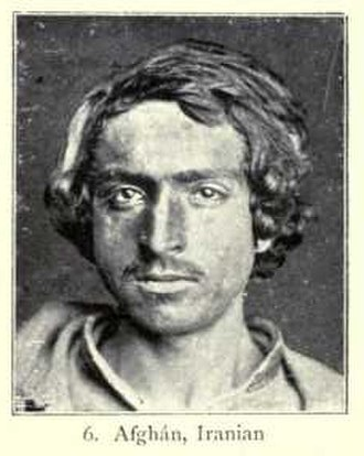 Irano-Afghan race - Afghan man of Irano-Afghan type, from Augustus Henry Keane's Man, Past and Present (1899).