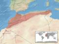 Macrovipera mauritanica distribution.png
