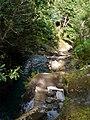 Madeira2 034.jpg