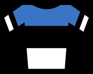 Israel Cycling Academy - Image: Maillot Estonia