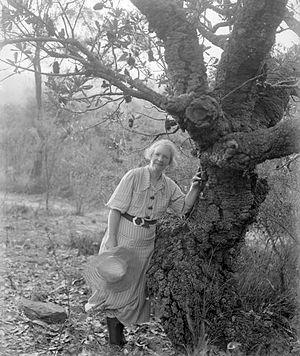 Margaret Preston - Margaret Preston outside her home in Berowra, 1936.