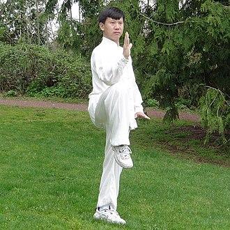 Yang Jun (martial artist) - Image: Master Yang Jun Golden Rooster Stands On One Leg (Left)
