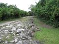 Maya road.png